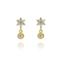 Aubree Gold Filled Star Earrings image